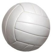f3001-volleyballclipart